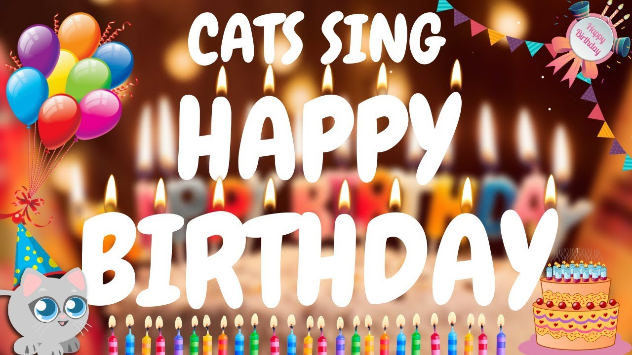 Cats Sing Happy Birthday Song Cats Singing Song Youtube