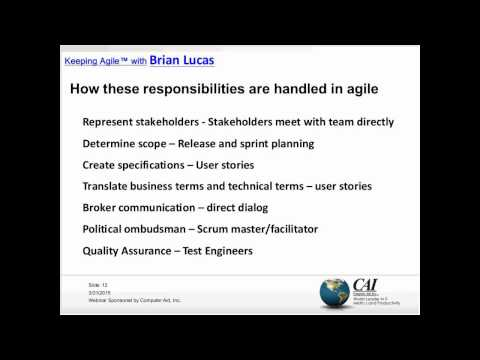Agile Business Analysis The Role of a BSA – Nothing or Everything