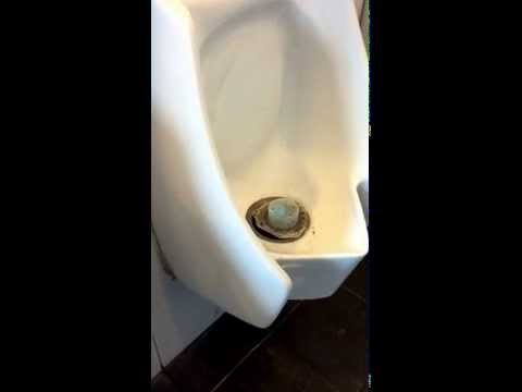 Zeroflush Waterless Urinals Destroyed By Incompetent Cleaning Servicing