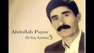 Abdullah Papur - Bir Kuş Konmuş - [ Official Music © ŞAH PLAK ]