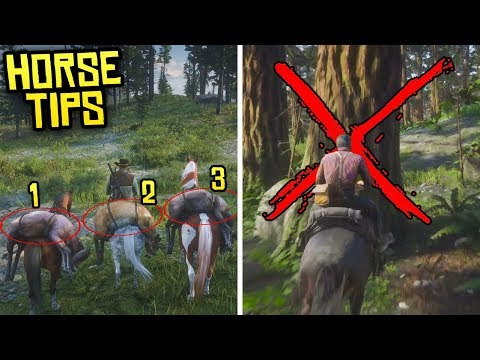 Red Dead Redemption 2 - 7 Things You NEED to Know About Your Horse