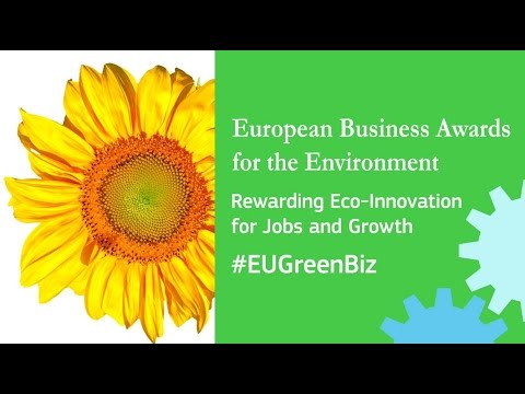 European Business Awards for the Environment 2016-2017 – Awards ceremony