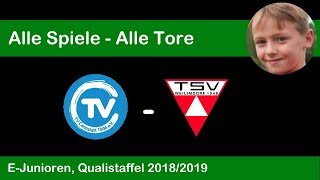 Qualistaffel 2018/19 - E-Junioren: TV Cannstatt - TSV Weilimdorf