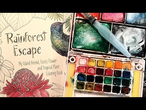 Coloring with Watercolor in RainForest Escape