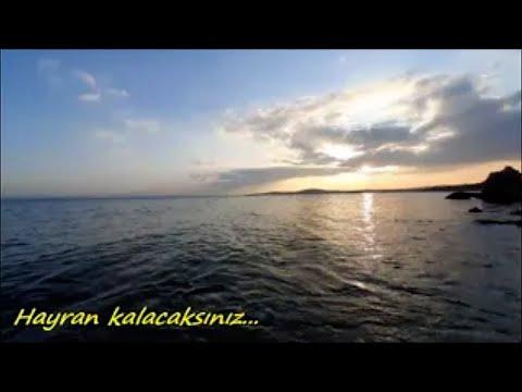 Deniz Sesi, Su, Kuş ve Dalga Sesleri. Rahatlatıcı Fon Müziği Dinle, Meditasyon, Güzel Manzara, Doğa