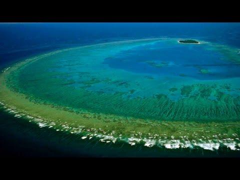 Lady Musgrove Island