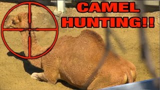 EATING A CACTUS, HUNTING CAMELS, & PRO Skimboarding! A Day In The Life!