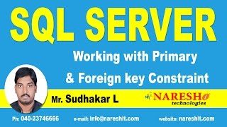 Working with Primary & Foreign key Constraint in SQL Server | SQL Server Tutorial