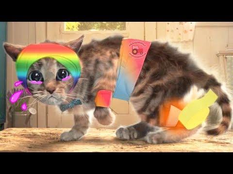 Приключения маленького котенка мультик игра для маленьких детей! #игровой мультфильм новые серии