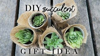 Succulent Gift Idea | DIY Summer Craft