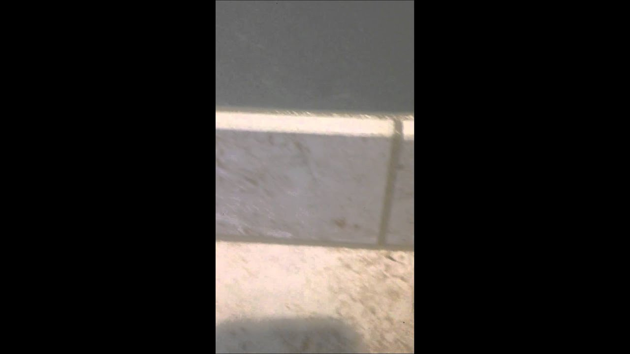 How To Grout A Tile Floor And Base Molding Properly Youtube