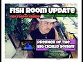 Fish Room Update /Red & Green Terror Cichlids/ And a brand new song!