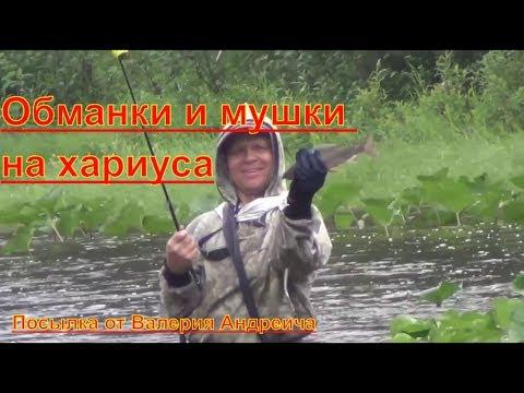 Вяжем обманки на хариуса правильно вяжите мухи на ленка и хариуса согласно природе в лесу 1