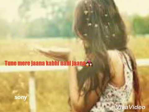 Tune mere jana kabhi nahi jana 😵 female version 😨 whtsapp status video