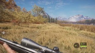 the Hunter : Call of the Wild - Moose mayhem