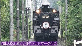 東武線C11+14系『SL大樹』運行1周年 '18年7・8月の走行シーン