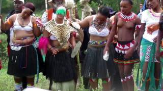 The traditional Zulu wedding (Udwendwe) celebration
