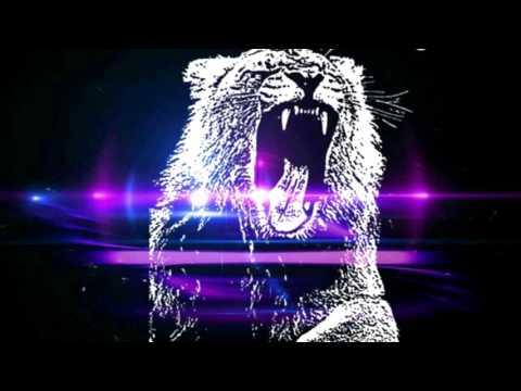 Martin Garrix - Animals (DJ Acke REMIX)