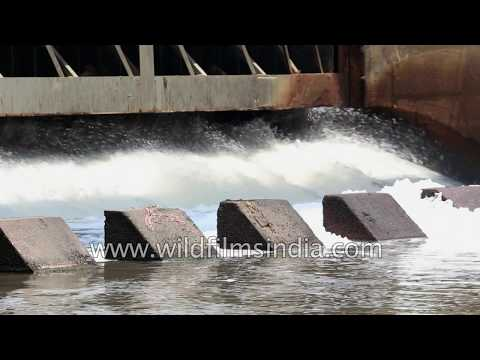 Toxic wastes pollute Hindon River, a tributary of Yamuna river