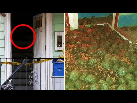 Cops Called to Investigate Smell from Abandoned House Lead to a Strange Discovery