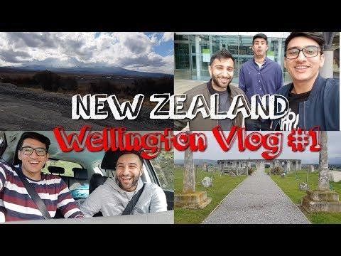 Exploring Aotearoa New Zealand | Wellington Trip Vlog | #1