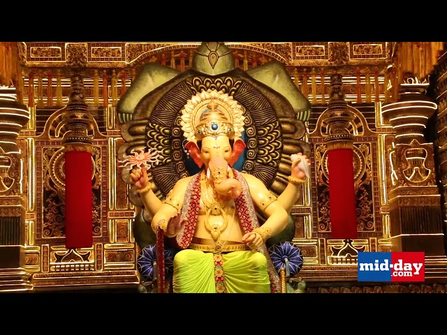Midday Exclusive - Unveiling the first look of Mumbai's Lalbaugcha Raja! Watch now!