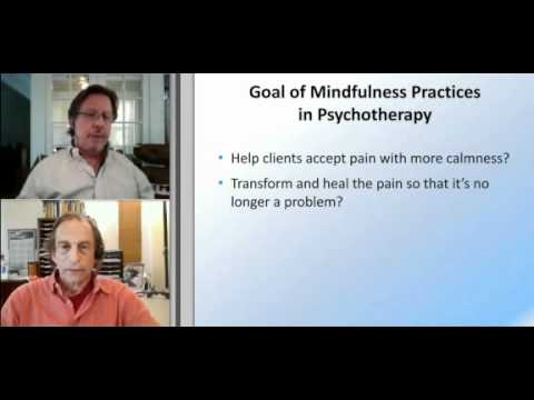 Richard Schwartz: New Perspectives: Is Mindfulness Enough? Excerpt