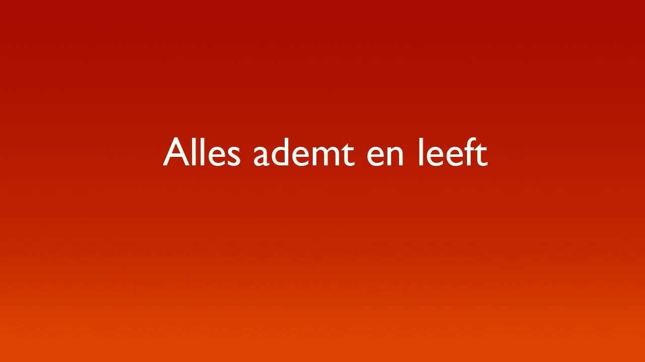 Alles Ademt En Leeft Circle Of Life Lyrics Tlk Dutch Musical