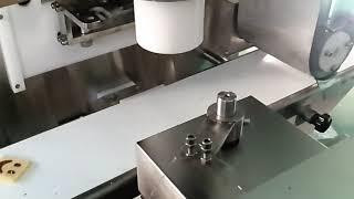 쿠키 와이어커팅 라인 YC-101