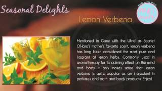 Seasonal Delights-lemon Verbena