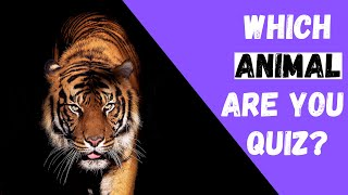 Which Animal Are You? - Personality Quiz