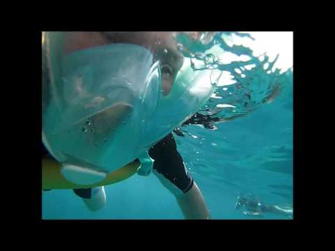 Bermuda Snorkeling Adventure May 2017