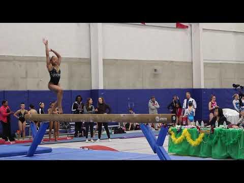 Last Gymnastics Meet of the Season/ Level 6/ 2nd AA