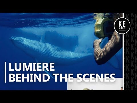 Tay Steele Interview - Lumiere Behind the Scenes