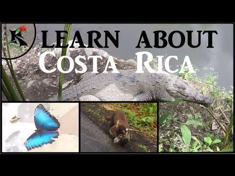 An Ecological Gem - Costa Rica Part 1