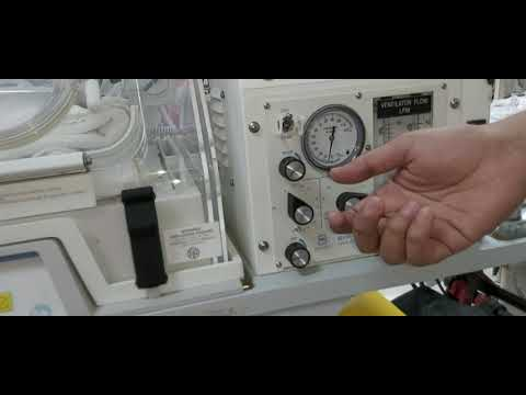 Workshop 31 how to adjust neonatal transport ventilator? Neonatal transplantation
