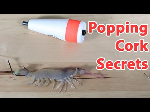 How To Rig A Shrimp Under A Popping Cork Like A Pro