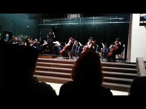 Bogle Junior High School orchestra  2017