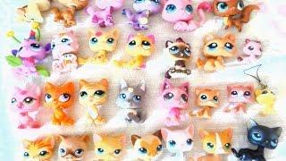 LPS - Моя коллекция кошек (есть стоячки и другие редкие кошки)