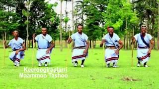 Musiqa.oromo(65)