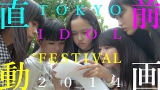 8月2日(土)と3日(日)に開催される「TOKYO IDOL FESTIVAL 2014」。 ...