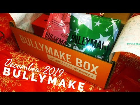 december-2019-bullymake-dog-subscription-box-unboxing