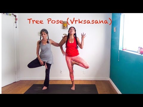 yoga tree pose (vrksasana) for beginners with shana meyerson YOGAthletica