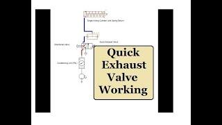quick exhaust valve in pneumatic circuit animation