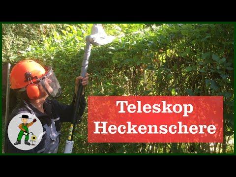 Die ikra teleskop heckenschere unsere erfahrungen youtube