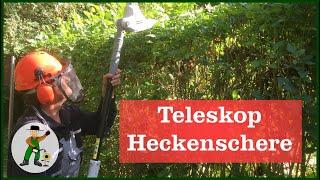 Die IKRA Teleskop Heckenschere Unsere Erfahrungen