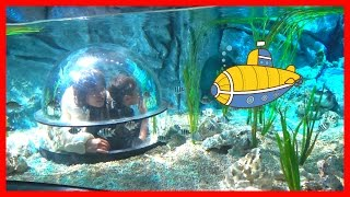 潜水艦でレゴの海を探検!!レゴランド名古屋 サブマリン・アドベンチャー お出かけ こうくんねみちゃん LEGO RAND JAPAN Submarine Adventure thumbnail