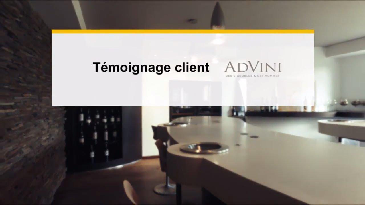 Témoignage Du Client Advini : Intégration De SAP Master Data Governance (MDG )