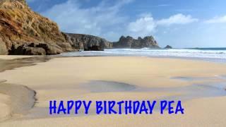 Pea Birthday Song Beaches Playas