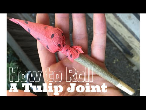 How to Roll a Tulip Joint